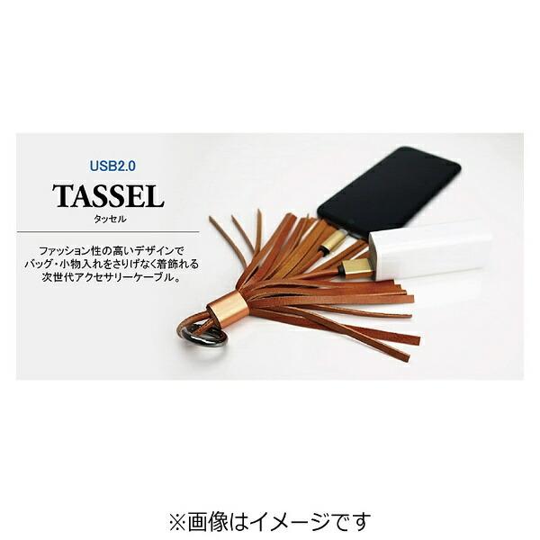 MSソリューションズ[Type-C]ケーブル充電・転送TASSELブラウンLEPLUSLP-TCTSBR[0.9m]