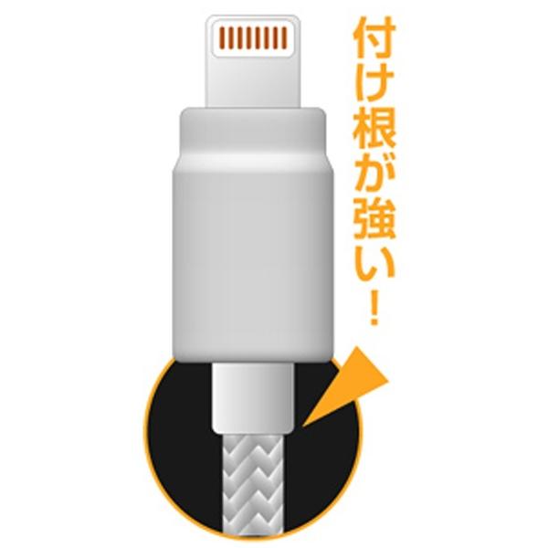 樫村KASHIMURA[ライトニング]ケーブル充電・転送(2m・ホワイト)MFi認証KL-54[2.0m][KL54]