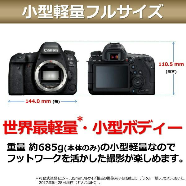 キヤノンCANONEOS6DMarkIIデジタル一眼レフカメラ[ボディ単体][EOS6DMK2]