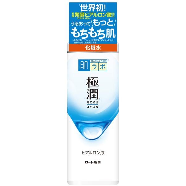 ロート製薬ROHTO肌研(ハダラボ)極潤ヒアルロン液(170ml)〔化粧水〕【rb_pcp】