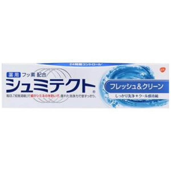 アース製薬Earthシュミテクト歯磨き粉フレッシュ&クリーン90g