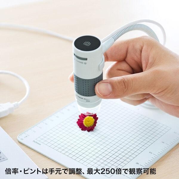 【送料無料】サンワサプライUSB顕微鏡LPE-07WLPE-07W[LPE07W]