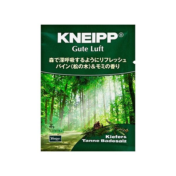 クナイプジャパンKneippJapanKNEIPP(クナイプ)Bソルトグーテルフト(40g)[入浴剤]