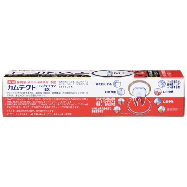 アース製薬Earthカムテクト歯磨き粉コンプリートケアEX薬用ハミガキ105g【wtcool】