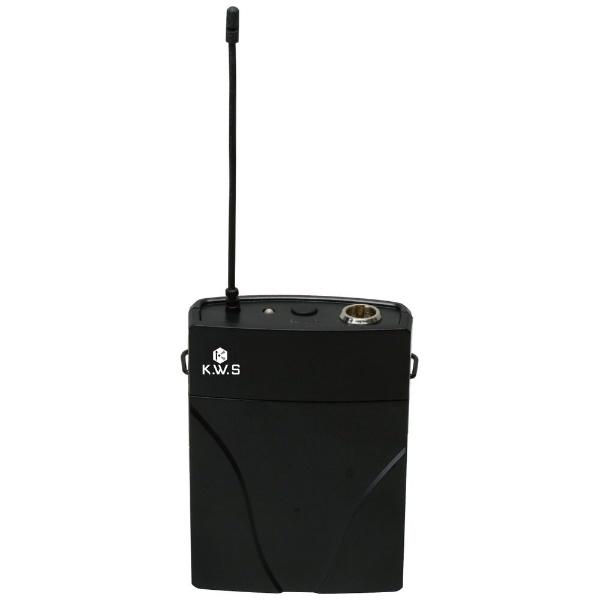 K.W.SデュアルワイヤレスシステムオールインワンセットKWS-2H/PLHS