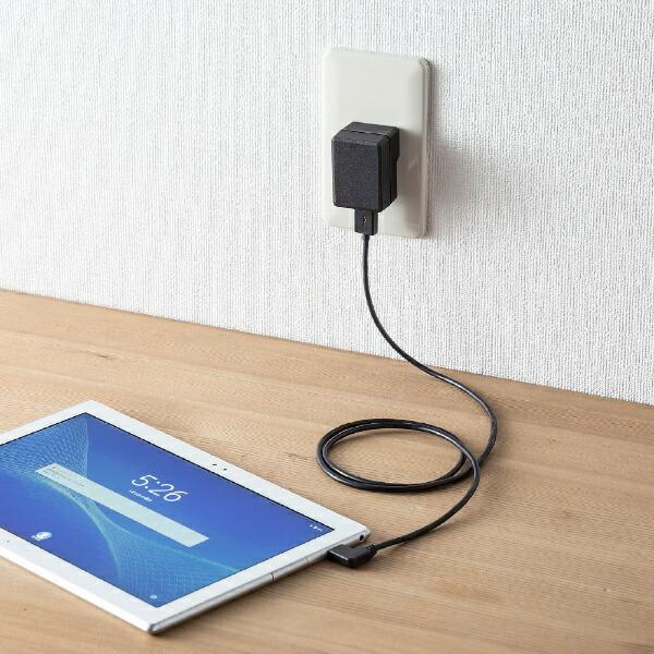 サンワサプライSANWASUPPLYスマホ用USB充電コンセントアダプタ(2A・高耐久タイプ)ACA-IP56BKブラック