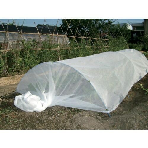 ダイオ化成DioChemicalsDio農園芸用寒冷紗遮光率22%1.8m×20m白414593