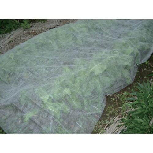 ダイオ化成DioChemicalsDio農園芸用不織布透光率90%2.1m×20m白419611