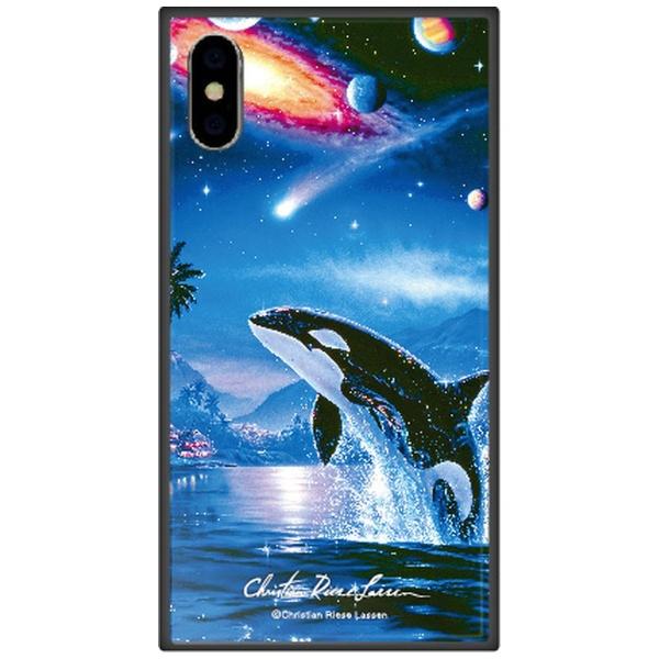 藤家FujiyaiPhoneXSMax6.5インチ用ラッセンガラスハイブリッドA.SILENTJOURNEY
