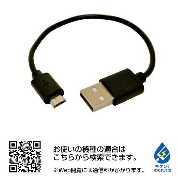 ラスタバナナRastaBananaタブレット/スマートフォン対応[microUSB/USB給電]USBモバイルバッテリー+microUSBケーブル2.1AライムイエローRLI040M2A01LY[4000mAh/1ポート/充電タイプ]