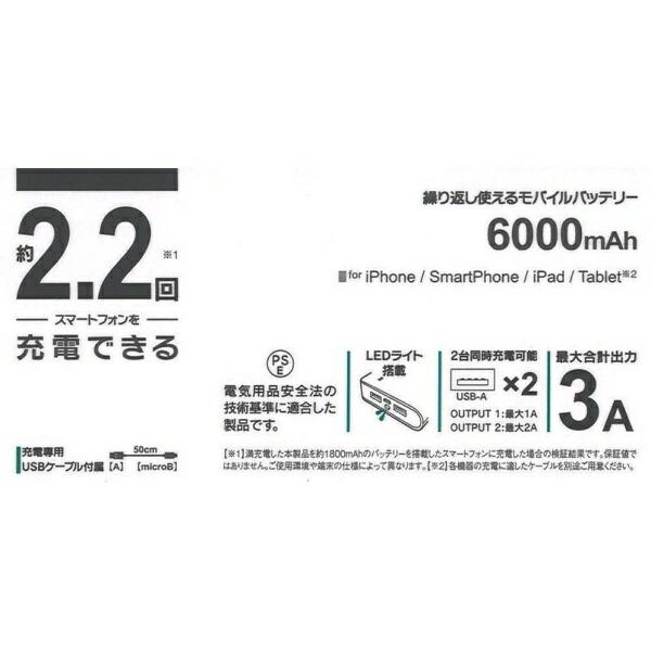 ラスタバナナRastaBananaタブレット/スマートフォン対応[microUSB/USB給電]USBモバイルバッテリー+microUSBケーブル(:2A/1A)ホワイトRLI060M2A01WH[6000mAh/2ポート/充電タイプ]