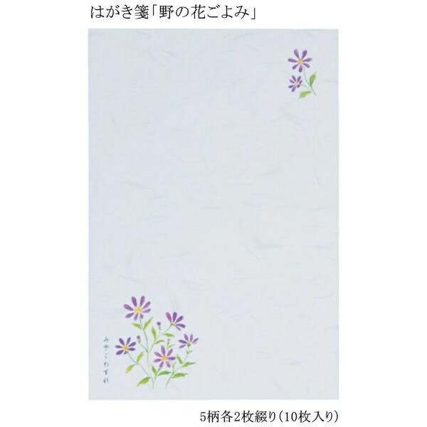 あかしやはがき箋野の花ごよみ