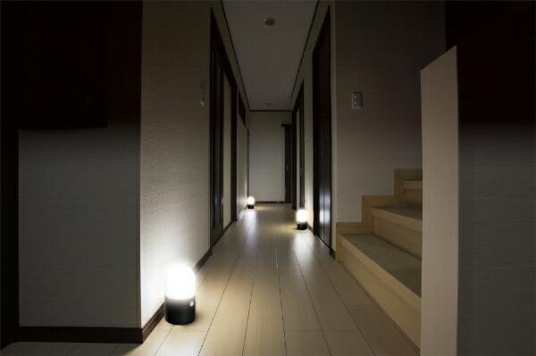 アイリスオーヤマIRISOHYAMA乾電池式LEDガーデンセンサーライト丸型2個セット