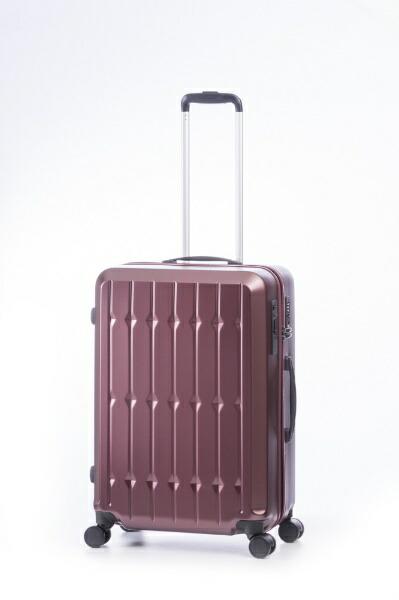 RUNWAY【ビックカメラグループオリジナル】スーツケースハードキャリー63LRUNWAYエスパニョルWINBC2002S24[TSAロック搭載]【point_rb】