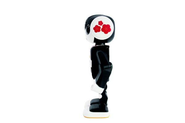シャープSHARPRoBoHoN用ロボホンウェア耳&前掛けセット(梅柄)SR-CD07