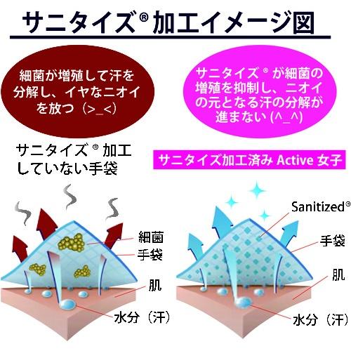 東和コーポレーションTOWACORPORATIONトワロンActive女子ターコイズ8/M521-M