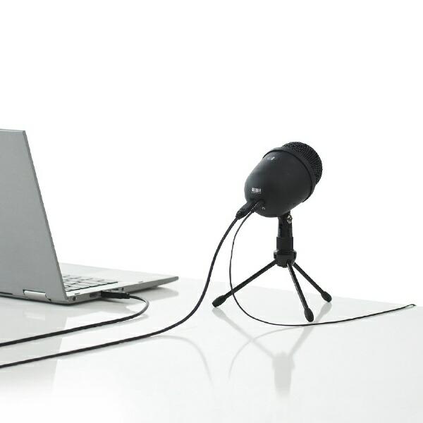 サンワサプライSANWASUPPLYMM-MCU04BKマイク[USB][MMMCU04BK]