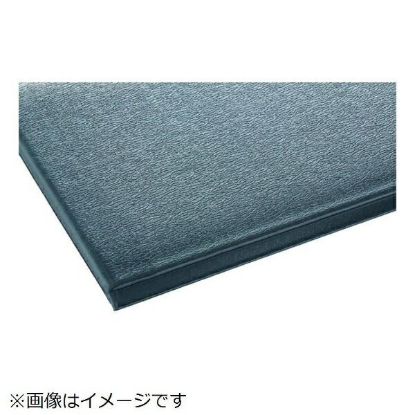 テラモトTERAMOTOテラモトテラクッション極厚450×600グレーMR-069-020-5