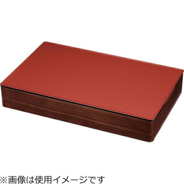 遠藤商事EndoShojiTKG和風ビュッフェ用プレート耐熱ABS1/1朱<NWA0302>[NWA0302]