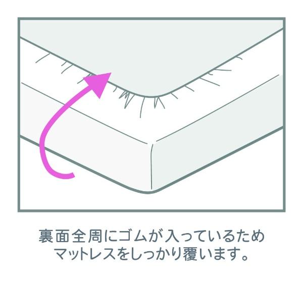 小栗OGURI【ボックスシーツ】天竺ニットカーマンダブルサイズ(ポリエステル65%、綿35%/140×200×28cm/サックス)