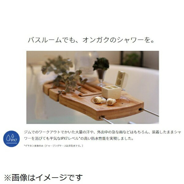 AVIOTフルワイヤレスイヤホンネイビーTE-D01g[リモコン・マイク対応/ワイヤレス(左右分離)/Bluetooth][アビオットワイヤレスイヤホンTED01GNV]
