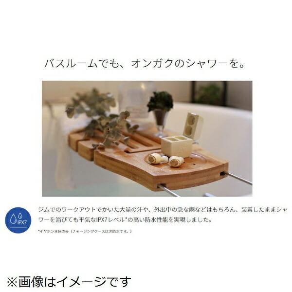AVIOTフルワイヤレスイヤホンシルバーTE-D01g[ワイヤレス(左右分離)/防水/Bluetooth][アビオットワイヤレスイヤホンTED01GSL]