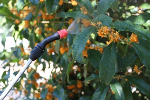 マルハチ産業Maruhachiマルハチ産業蓄圧式噴霧器ハイパー6L延長パイプ付(幅19.3×奥行18.5×高さ43cm)