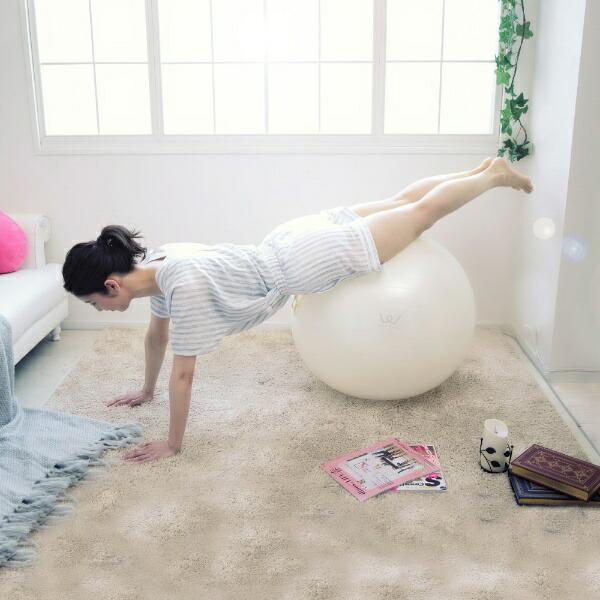 アルインコALINCOエクササイズボール(65cm/ホワイト)WBN065