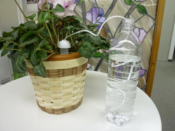 ダリヤ(マルハチ産業)水やり当番Mサイズ(2個セット)