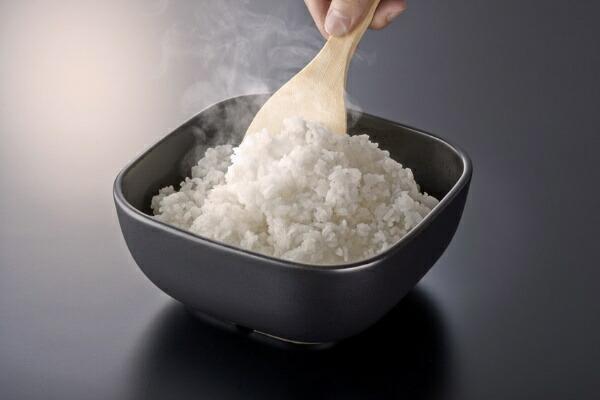 ハリオHARIOご飯釜のおひつ2合用