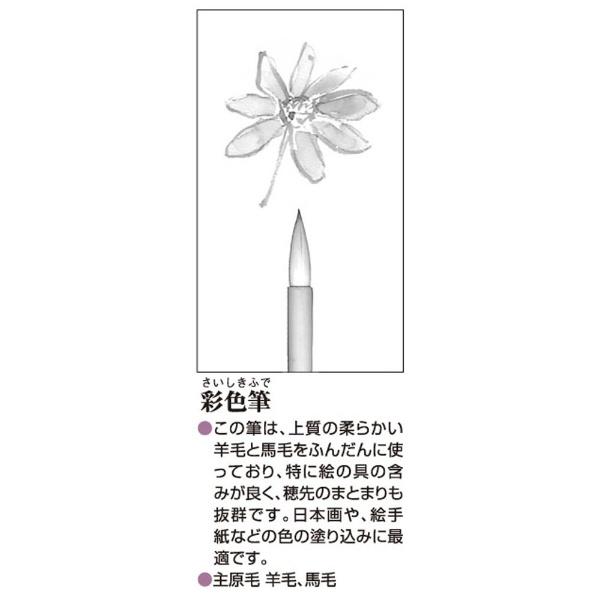 あかしや彩色筆中AN-09