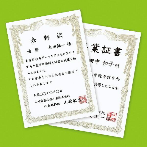 サンワサプライSANWASUPPLYJP-SHA4TN2〔インクジェット〕賞状縦型0.209mm[A4/10枚]