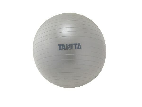 タニタTANITAタニタサイズジムボール(650mm/シルバー)TS-962