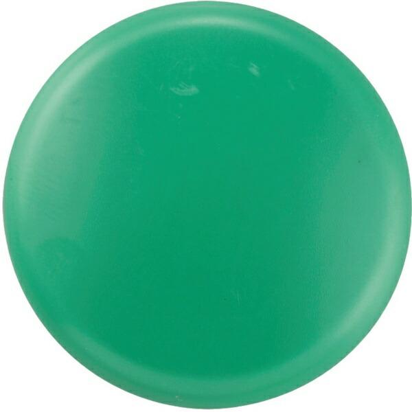 日本緑十字JAPANGREENCROSS緑十字カラーマグネット(ボタン型タイプ)緑40mmΦ10個組312095