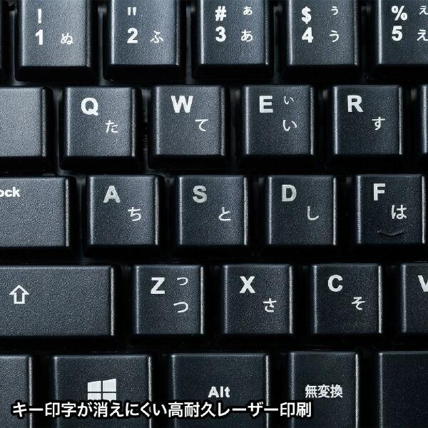サンワサプライSANWASUPPLYキーボード・マウスセットブラックSKB-WL34SETBK[USB/ワイヤレス]