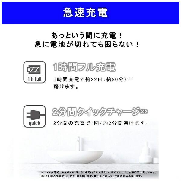 パナソニックPanasonic電動歯ブラシDoltz(ドルツ)青EW-DL36-A[音波・超音波式/AC100V-240V]