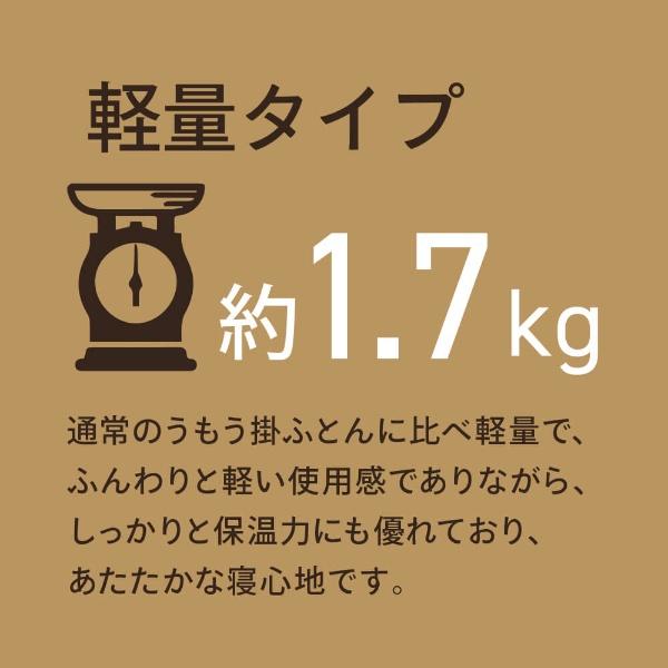 生毛工房UMOKOBO軽量羽毛布団FT_HD1S[シングル(150×210cm)/冬用/ハンガリー産ホワイトダックダウン90%/日本製]