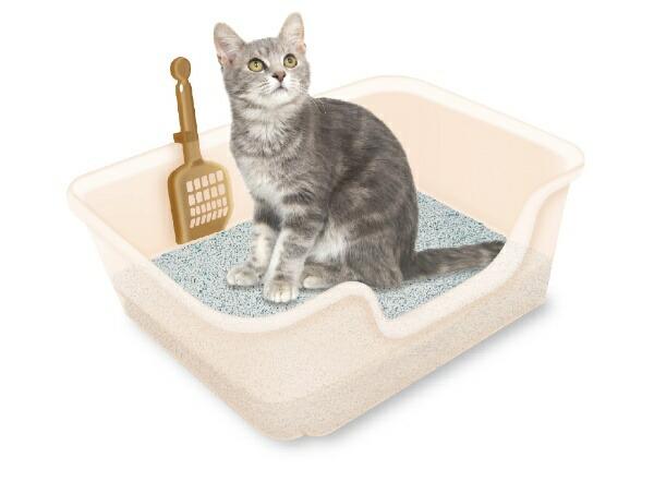 LIONライオン獣医師開発ニオイをとる砂専用猫トイレ1個