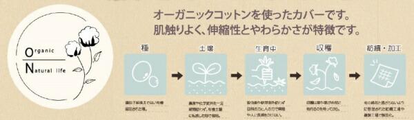 イケヒコIKEHIKOオーガニックコットン掛布団カバーダブルサイズ(190×210)ブラウンマイン