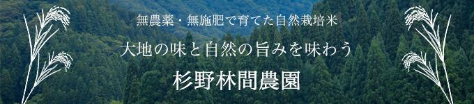 杉野林間農園