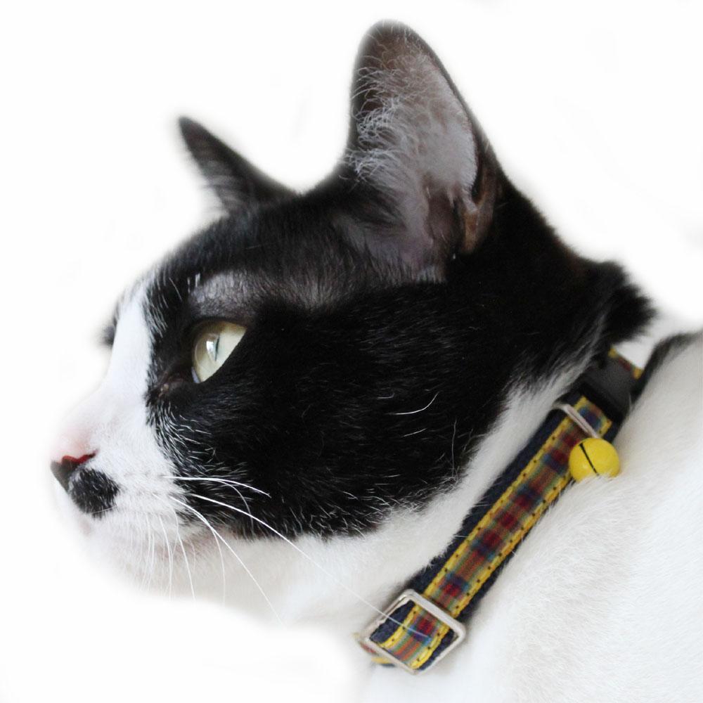 BIRDIE猫用CATタータンチェックカラー