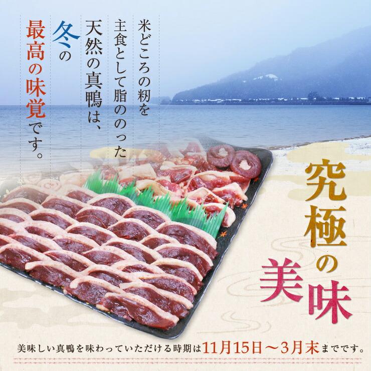 究極の美味。米どころの籾を主食として脂ののった天然の真鴨は、冬の最高の味覚です。美味しい真鴨を味わっていただける時期は11月15日〜3月末までです。