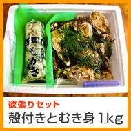 殻付き牡蠣/牡蠣/かき