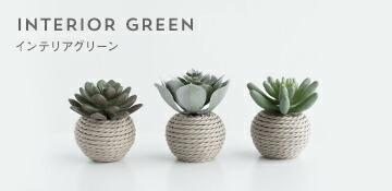 INTERIOR GREEN インテリアグリーン