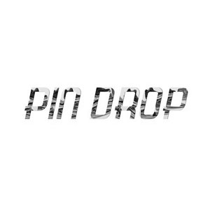 pindropnyc