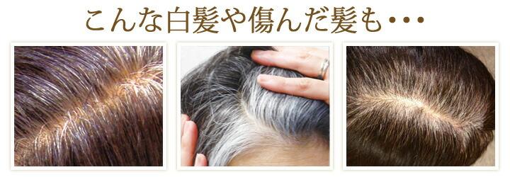 利尻ヘアカラー白髪染めなら、髪を傷まずにキレイに染める。