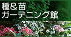 種・苗・ガーデニング