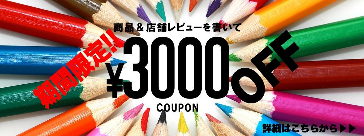 レビューを書いて1,000円OFF!