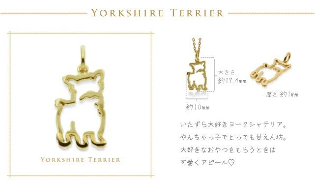 ヨークシャテリア yorkshire terrier