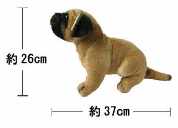 撮影に使用している犬のぬいぐるみサイズです。